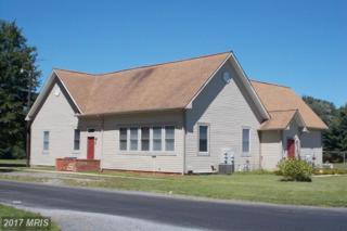 27040 Bee Tree Road, Henderson, MD 21640 (#CM9871990) :: Pearson Smith Realty