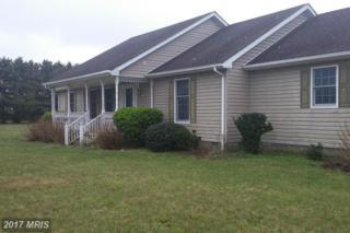 8480 Deer Run Road, Denton, MD 21629 (#CM9885609) :: Pearson Smith Realty