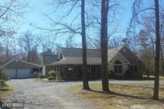 25735 Brookwood Road, Greensboro, MD 21639 (#CM9901737) :: Pearson Smith Realty