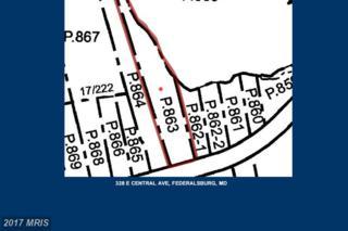 328 Central Avenue E, Federalsburg, MD 21632 (#CM9909249) :: Pearson Smith Realty