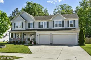 1213 Painted Fern Road, Denton, MD 21629 (#CM9928814) :: Pearson Smith Realty