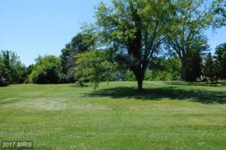 307 Buena Vista Avenue, Federalsburg, MD 21632 (#CM9948367) :: Pearson Smith Realty