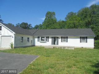 8108 Haven Street, Denton, MD 21629 (#CM9950079) :: Pearson Smith Realty