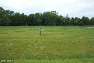 Deer Run Court, Denton, MD 21629 (#CM9959335) :: Pearson Smith Realty