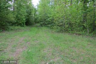 Warehime Road, Manchester, MD 21102 (#CR9661910) :: Pearson Smith Realty