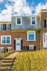 724 Robinwood Drive, Mount Airy, MD 21771 (#CR9825233) :: Pearson Smith Realty