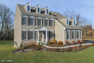 338 Cody Court, Westminster, MD 21157 (#CR9841351) :: LoCoMusings