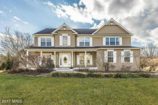 3719 Falling Green Way, Mount Airy, MD 21771 (#CR9849667) :: LoCoMusings