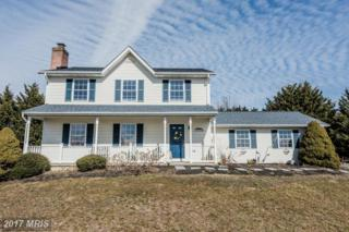 2694 Leslie Road, Mount Airy, MD 21771 (#CR9863110) :: Pearson Smith Realty