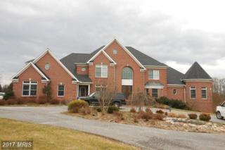 6419 Homebuilder Drive, Mount Airy, MD 21771 (#CR9865806) :: Pearson Smith Realty