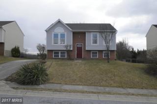 10 Reaverton Avenue, Taneytown, MD 21787 (#CR9870715) :: Pearson Smith Realty