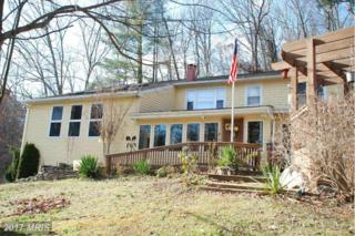 3100 Coon Club Road, Hampstead, MD 21074 (#CR9872536) :: Pearson Smith Realty