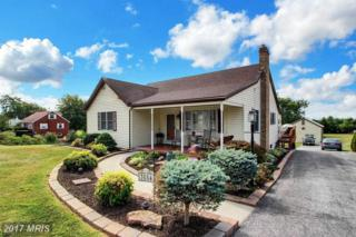 3854 Littlestown Pike, Westminster, MD 21158 (#CR9874616) :: Pearson Smith Realty