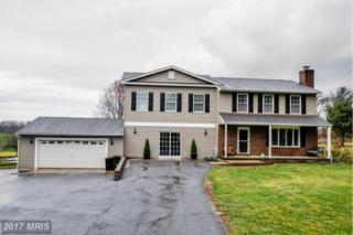 1416 Hallowell Lane, New Windsor, MD 21776 (#CR9877041) :: LoCoMusings