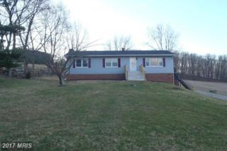 2545 Old Fort Schoolhouse Road, Hampstead, MD 21074 (#CR9878050) :: LoCoMusings