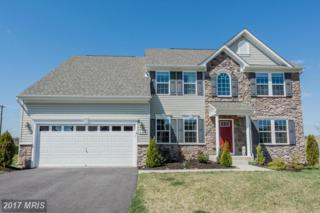 2010 Four Vines Court, Mount Airy, MD 21771 (#CR9879408) :: LoCoMusings