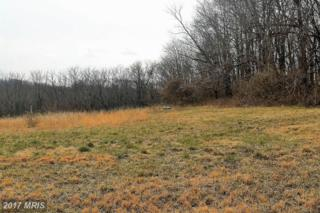 36-LOT Dream Mint Way, Westminster, MD 21157 (#CR9880787) :: LoCoMusings