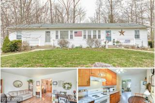 2037-A Don Avenue, Westminster, MD 21157 (#CR9881131) :: Pearson Smith Realty