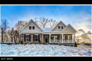 2703 Native Chestnut Road, Hampstead, MD 21074 (#CR9881238) :: LoCoMusings