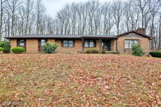 441 Bankard Road, Westminster, MD 21158 (#CR9888692) :: Pearson Smith Realty