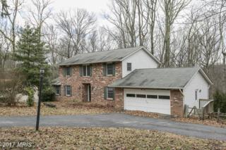 5680 French Avenue, Sykesville, MD 21784 (#CR9890768) :: LoCoMusings
