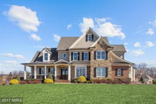 2492 Red Clover Drive, Finksburg, MD 21048 (#CR9891804) :: Pearson Smith Realty