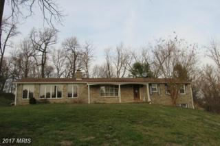 6535 Sunset Drive, Sykesville, MD 21784 (#CR9894542) :: Pearson Smith Realty