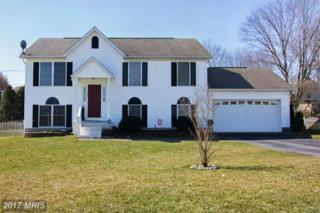 180 Marion Road, Westminster, MD 21157 (#CR9896154) :: LoCoMusings