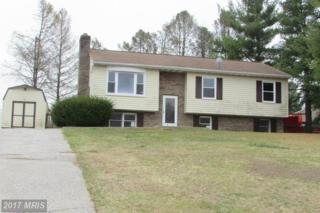3428 View Ridge Circle, Manchester, MD 21102 (#CR9898427) :: Pearson Smith Realty