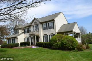 6257 Belmont Circle, Mount Airy, MD 21771 (#CR9916267) :: Pearson Smith Realty