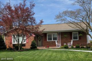 134 Hahn Road, Westminster, MD 21157 (#CR9919379) :: Pearson Smith Realty