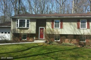 294 Winterberry Lane, Westminster, MD 21157 (#CR9923009) :: LoCoMusings