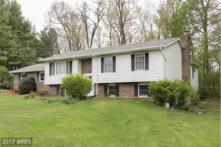 2807 Rainbow Drive, Westminster, MD 21157 (#CR9923871) :: Pearson Smith Realty
