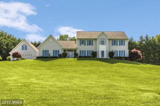 6090 Yorktown Road, Mount Airy, MD 21771 (#CR9924170) :: Charis Realty Group