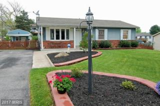 2906 Holland Drive, Manchester, MD 21102 (#CR9927538) :: Pearson Smith Realty