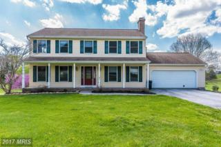 91 Walz Drive, Westminster, MD 21158 (#CR9927791) :: Pearson Smith Realty
