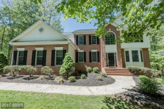 3010 Blyth Court, Finksburg, MD 21048 (#CR9936449) :: Pearson Smith Realty