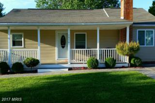 1516 Cherry Avenue, Sykesville, MD 21784 (#CR9936775) :: Pearson Smith Realty