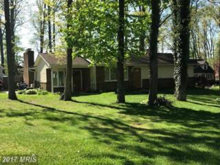 1505 Carriage Hill Drive, Westminster, MD 21157 (#CR9936822) :: Pearson Smith Realty