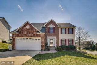 306 Bridlewreath Way, Mount Airy, MD 21771 (#CR9938345) :: Pearson Smith Realty