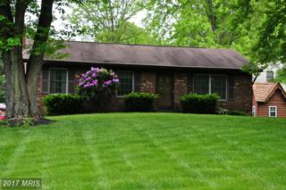 203 Eisenhower Drive, Sykesville, MD 21784 (#CR9939069) :: Pearson Smith Realty