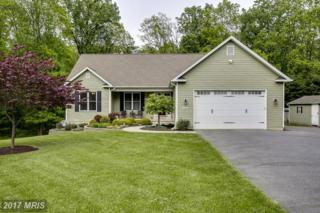 4025 Salem Bottom Road, Westminster, MD 21157 (#CR9940101) :: Pearson Smith Realty