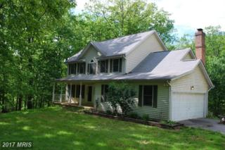 2985 Honeywood Drive, Mount Airy, MD 21771 (#CR9941650) :: Pearson Smith Realty