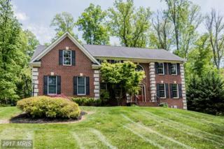 775 Lone Tree Road, Westminster, MD 21157 (#CR9944624) :: Pearson Smith Realty