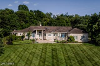 1629 Goldsmith Drive, Westminster, MD 21157 (#CR9945274) :: Pearson Smith Realty