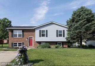 211 Grand Drive, Taneytown, MD 21787 (#CR9949305) :: Pearson Smith Realty