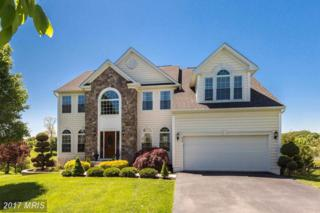 632 Pond View Court, Westminster, MD 21157 (#CR9950396) :: The Bob Lucido Team of Keller Williams Integrity