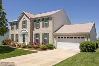 36 Kate Wagner Court, Westminster, MD 21157 (#CR9950457) :: Pearson Smith Realty