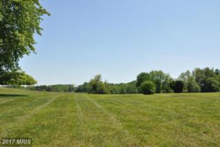 Louisville Road, Finksburg, MD 21048 (#CR9950991) :: Pearson Smith Realty