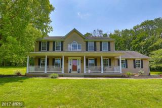 1083 Montclare Drive, Sykesville, MD 21784 (#CR9953427) :: Pearson Smith Realty